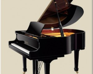 A good Chinese piano?